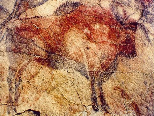 Prehistoric cave painting, Bison. c. 15,000-12,000 BCE. Image length 77 in. (195 cm). Located in Altamira, Spain.