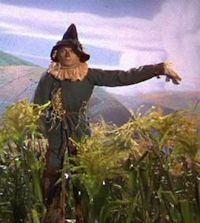 It's pleasant down that way, too. ~ The Scarecrow, The Wizard of Oz 1939.
