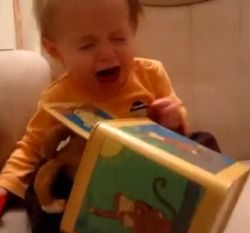 Baby's First Jack-in-the-Box